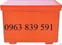 Bán thùng ướp lạnh công nghiệp 450l có chân giá cực rẻ