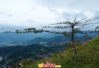 Trải nghiệm du lịch cắm trại tại núi Cô Tiên - TP Nha Trang