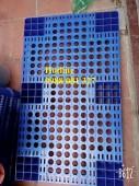 Pallet nhựa PL04LS hàng mới 100‰ chuyên kê hàng 0988 081327