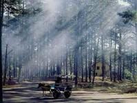 Du Lịch hè Đà Lạt giảm 10‰ - Chinh phục đỉnh Lang Biang huyền thoại 4 Ngày