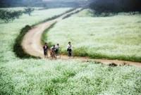 Du lịch hè đến Thung Nai - Mộc Châu - Giá shock giảm đến 20‰