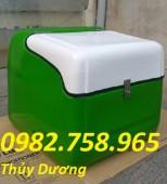 Bán thùng giao hàng sau xe máy, thùng ship hàng, thùng đựng thực phẩm giá rẻ