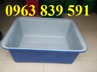 Bán thùng nhựa đặc chữ nhật 2 lớp đựng nước nuôi cá