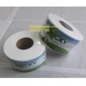 giấy vệ sinh cuộn lớn, giấy vệ sinh cuộn nhỏ