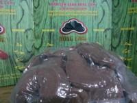 Nấm Lim Xanh Nông lâm 0.5kg