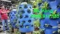 Vật liệu sử dụng trong mô hình trồng rau sạch