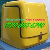 Thùng chở hàng sau xe máy nhựa composite giá rẻ