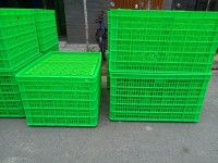Bán sóng nhựa công nghiệp có 26 bánh xe - giao hàng tận nơi